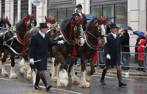 Shires - Lord Mayors Show (257) (by malcolm bull)