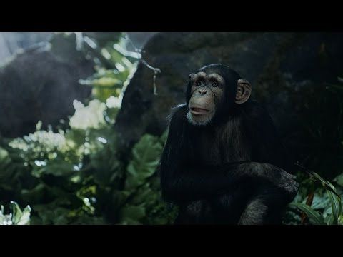 Tarzan Fights Over Directions It S What You Do Geico Youtube