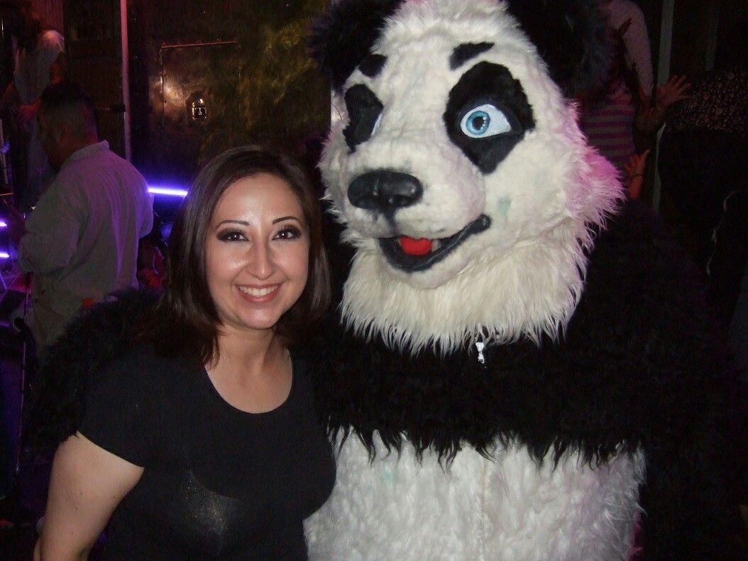 Fursuit Panda cute panda fursuit | furry, panda bear, fursuit