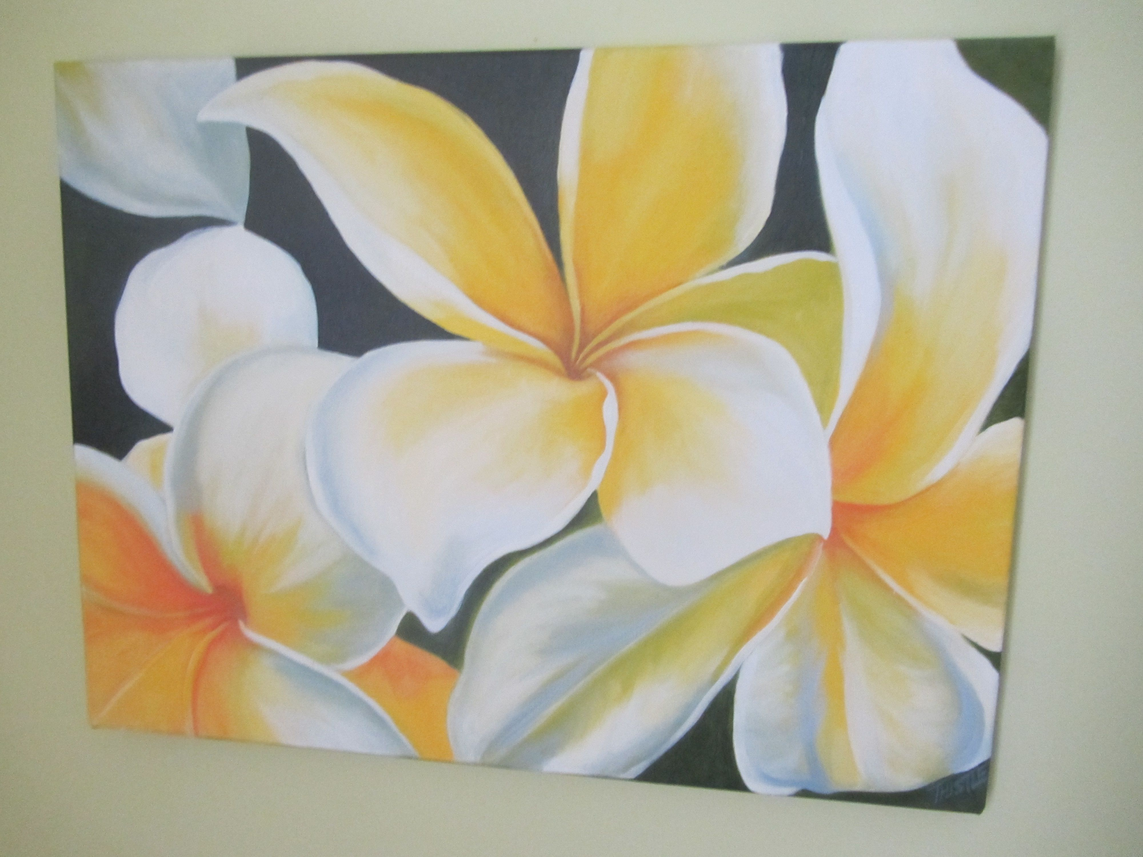 Plumeria hawaiian flower oil painting email thistledogarticloud plumeria hawaiian flower oil painting email thistledogarticloud for more information on izmirmasajfo Image collections