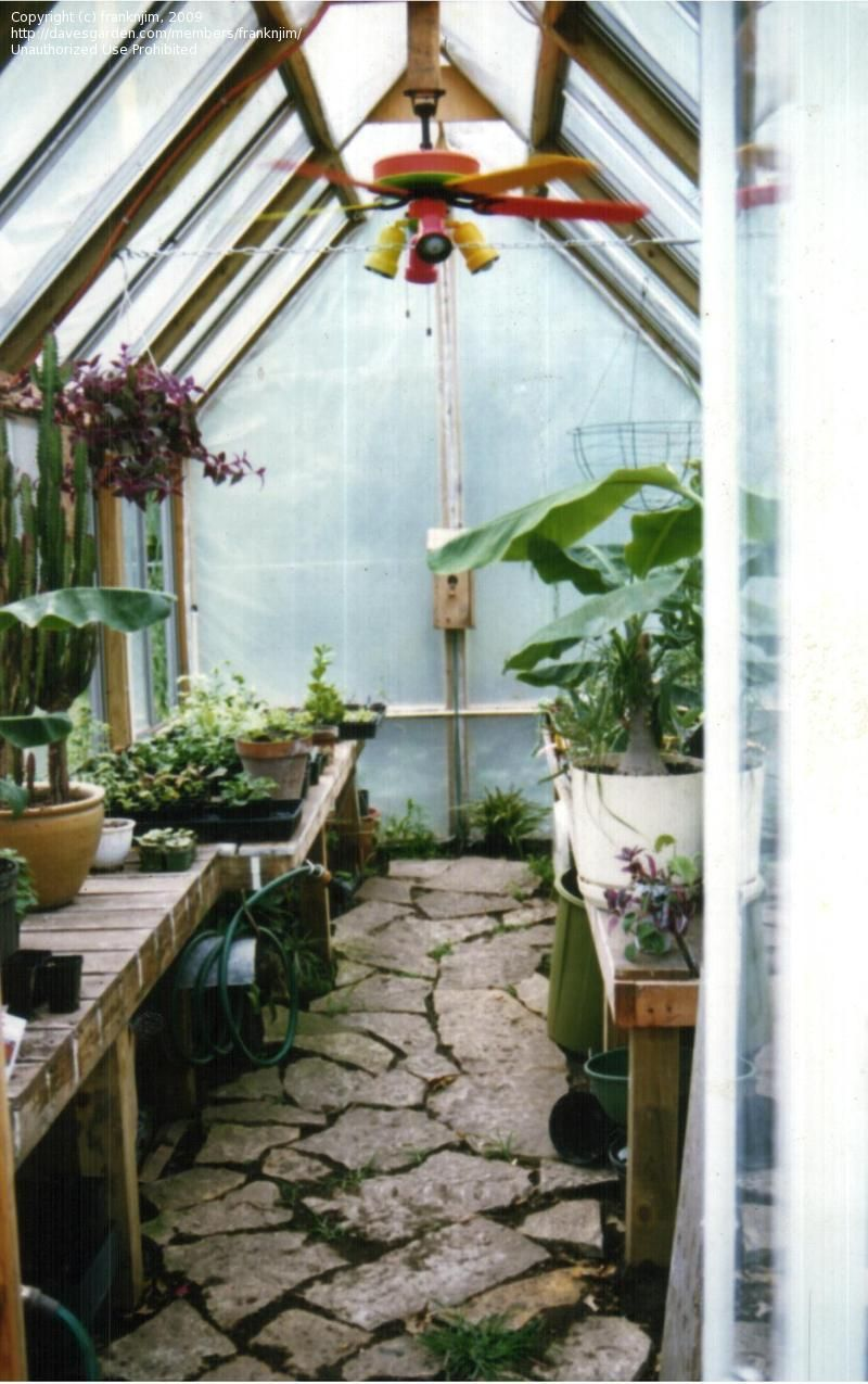 greenhouse plans old windows - Google Search
