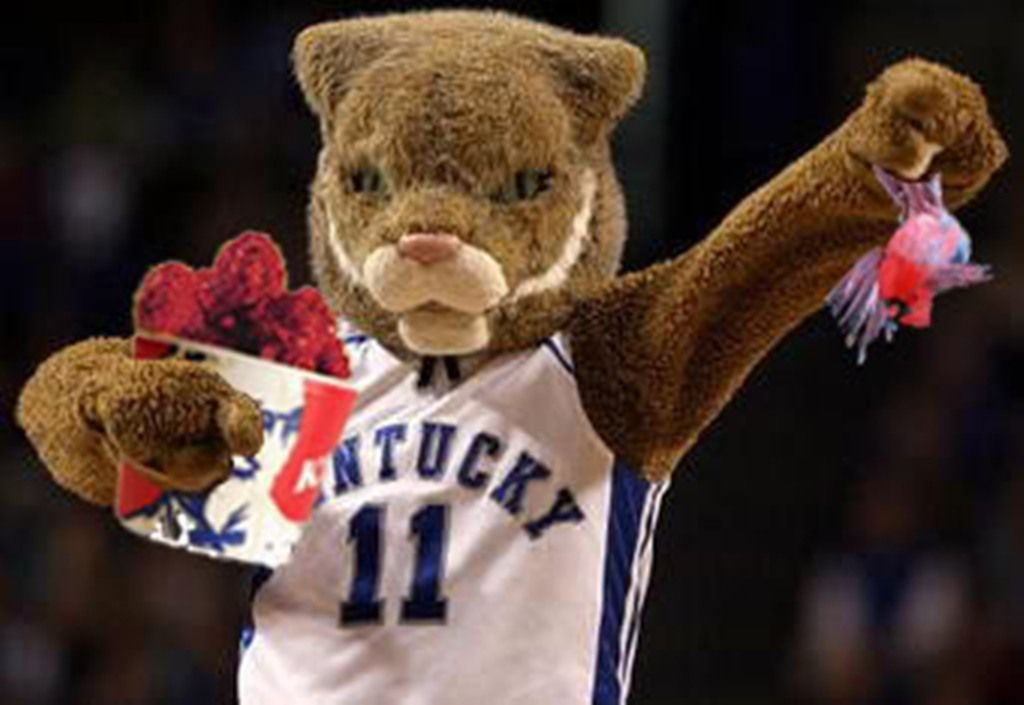 Go Cats! (With images) Big blue nation, Kentucky