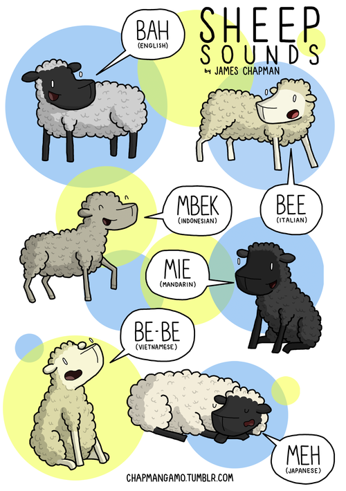 SHEEP SOUNDS There is nothing quite as apathetic as a