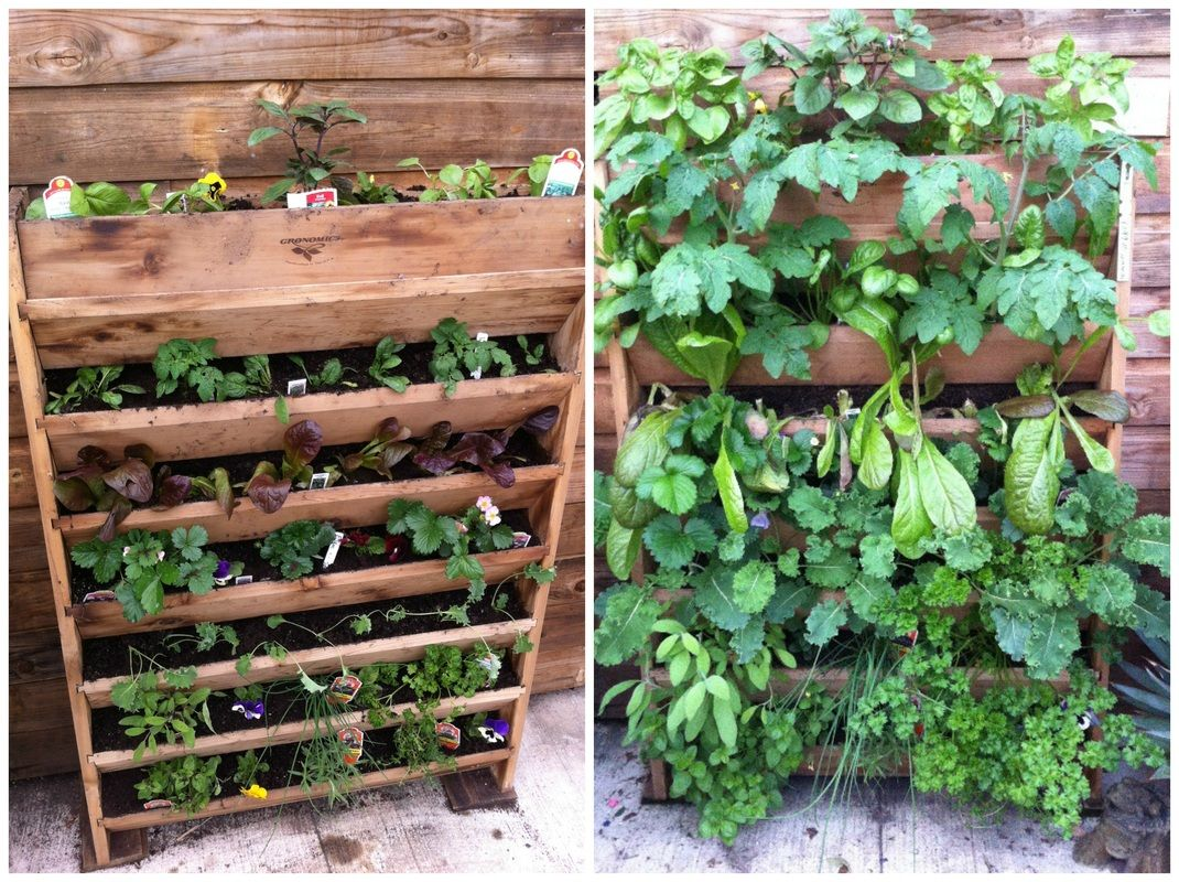 Genial Category: Vertical Gardening   Burlington Garden Center