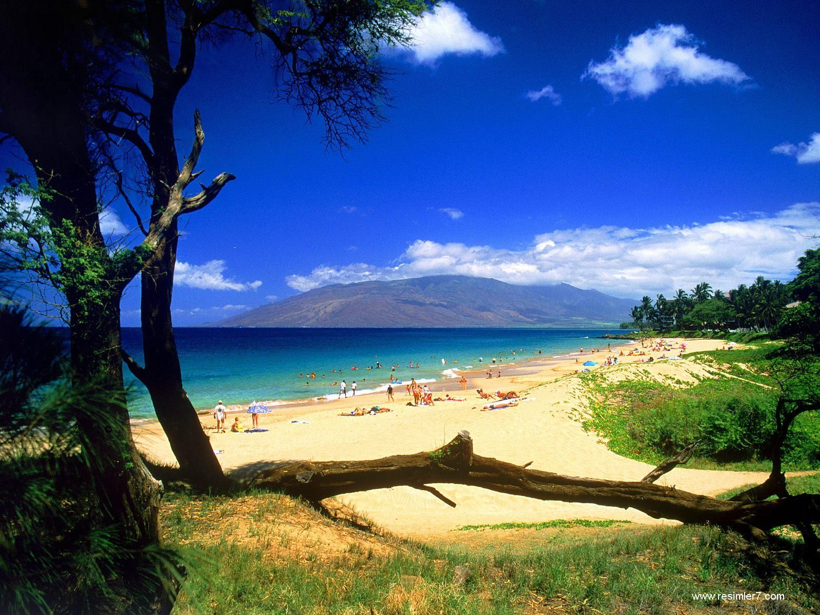 How could anyone look at this photo and say....uh, no....I don't wanna go there. Gorgeous, Maui. :)
