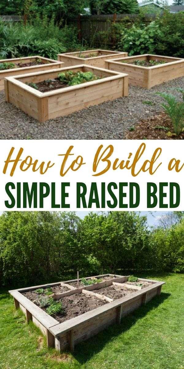 How To Build A Simple Raised Bed Raised Garden Beds