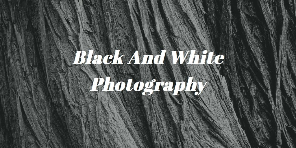 Black and white photography tutorial