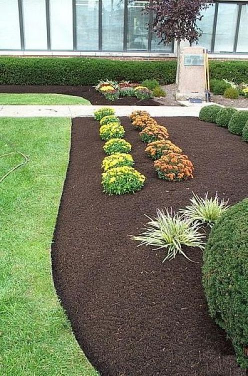 How To Choose The Best Mulch | Garden mulch, Landscaping and Gardens