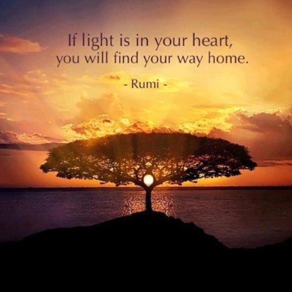 Home is not a place, it's a feeling. Return to that feeling everyday...find a quiet place today, turn the light of awareness around … | Rumi love, Rumi quotes, Rumi