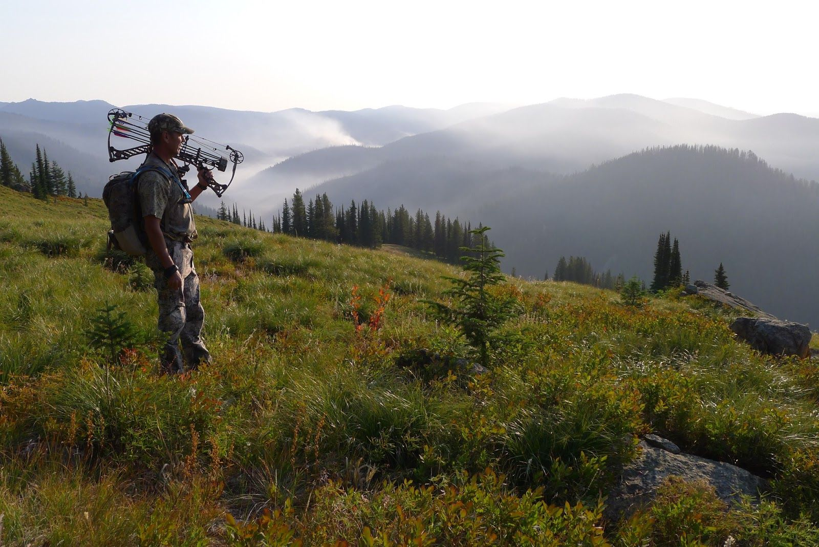 Elk hunting back country bow hunting hunting conservation