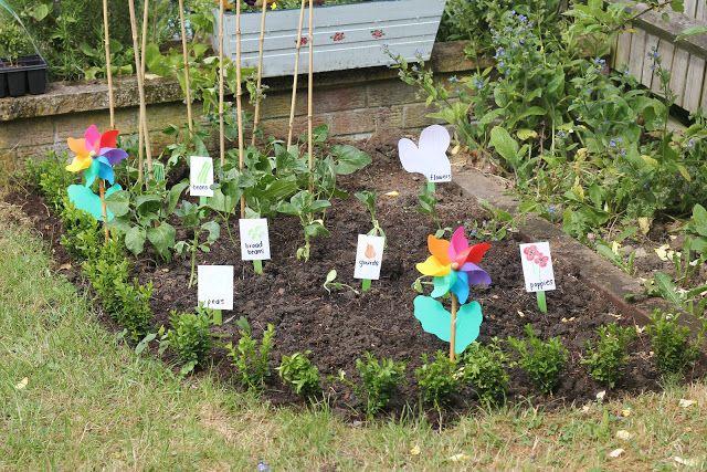Making An Organic Vegetable Garden With Children Vegetable