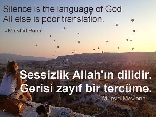 Pin By Nadide On Edeb Iyat Ya Hu Turkish Quotes Bilingual Quotes Quotes