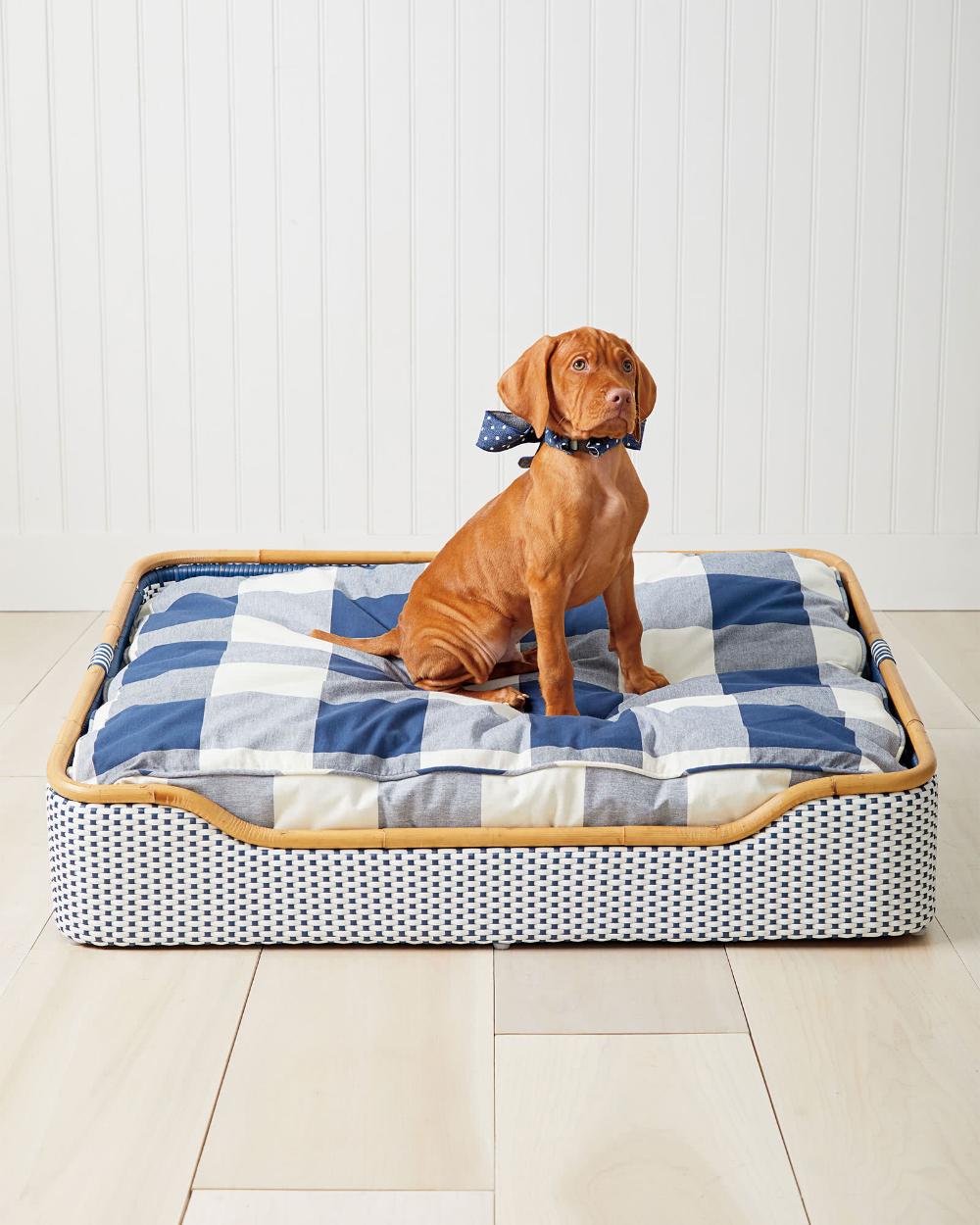 Riviera Dog Bed Pet Friendly Furniture Dog Bed Trendy Dog Beds