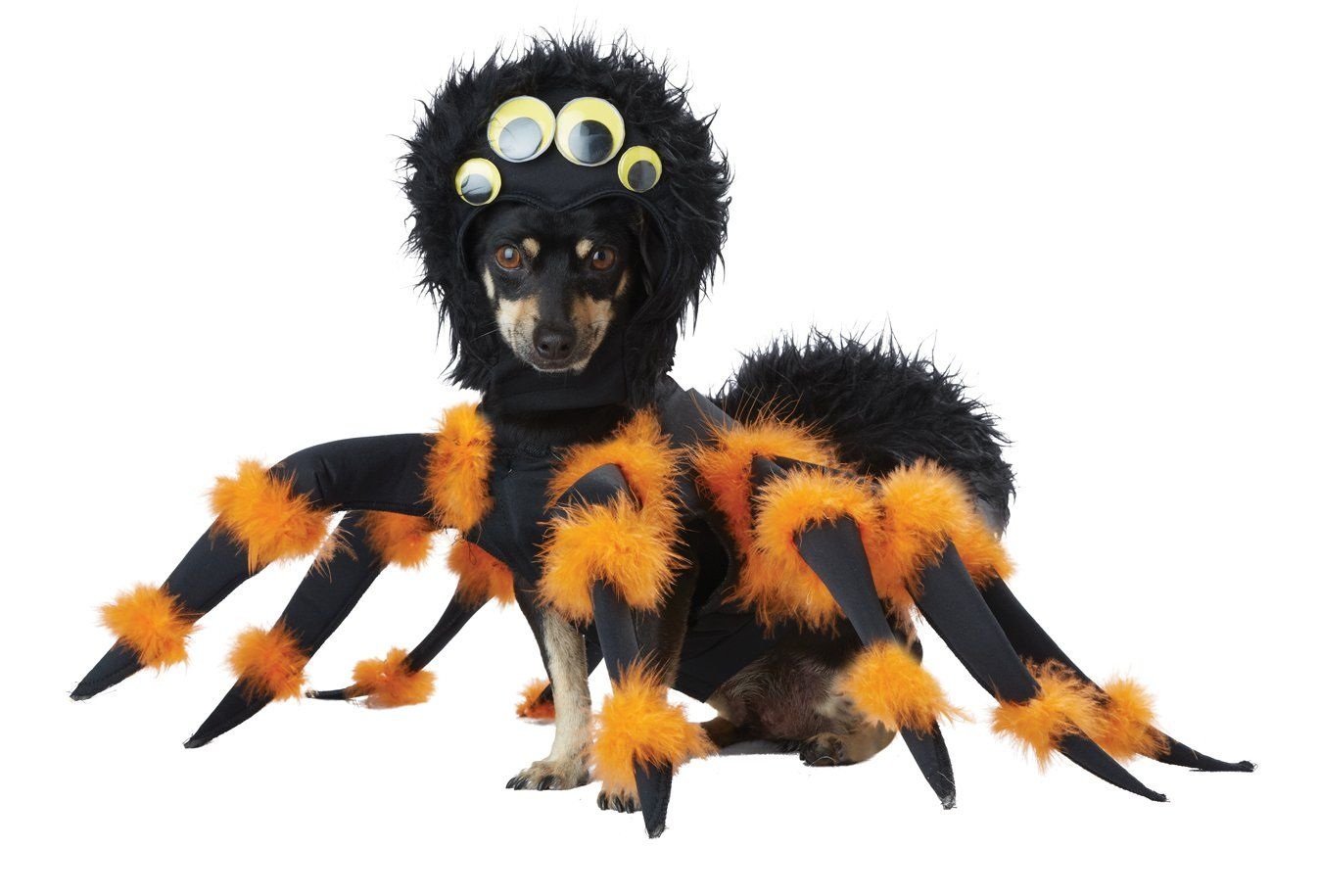 Black Widow Tarantula Spider Pup Pet Dog Costume Size Large