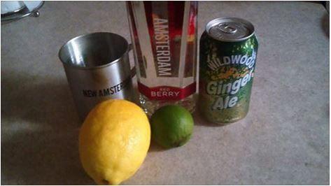 Red Berry Ale New Amsterdam Vodka Ginger Ale Splash Of Lemon