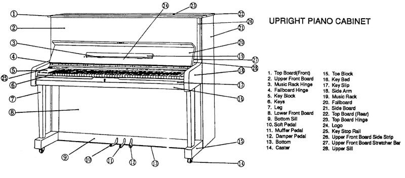 Upright Piano Parts Note The Names Of The 3 Pedals Piano Parts Piano Diagram