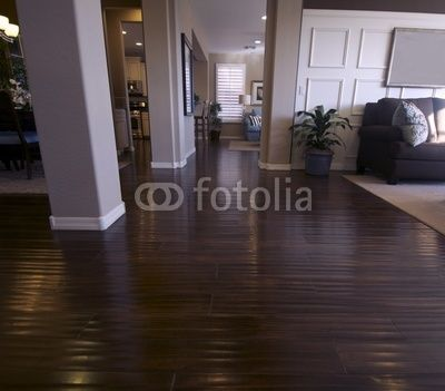i love the dark hardwood floors in a house so pretty but