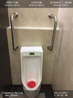 Hand Rails To Help Elderly To Urine Elderly Grab Bars