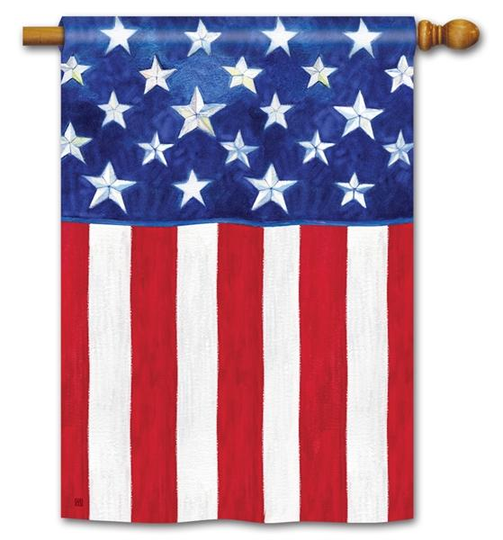 Stars And Stripes Forever Standard Flag House Flags Flag Decor Decorative Flags Outdoor