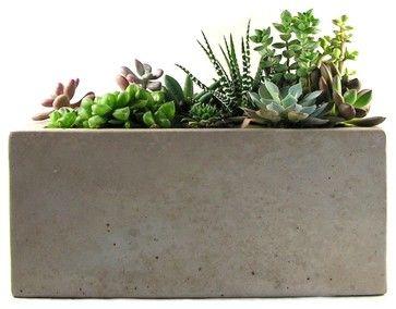 Rectangular Concrete Planter Modern Indoor Pots And Planters