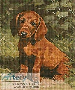 Puppy - cross stitch pattern designed by Tereena Clarke. Category: Dogs.