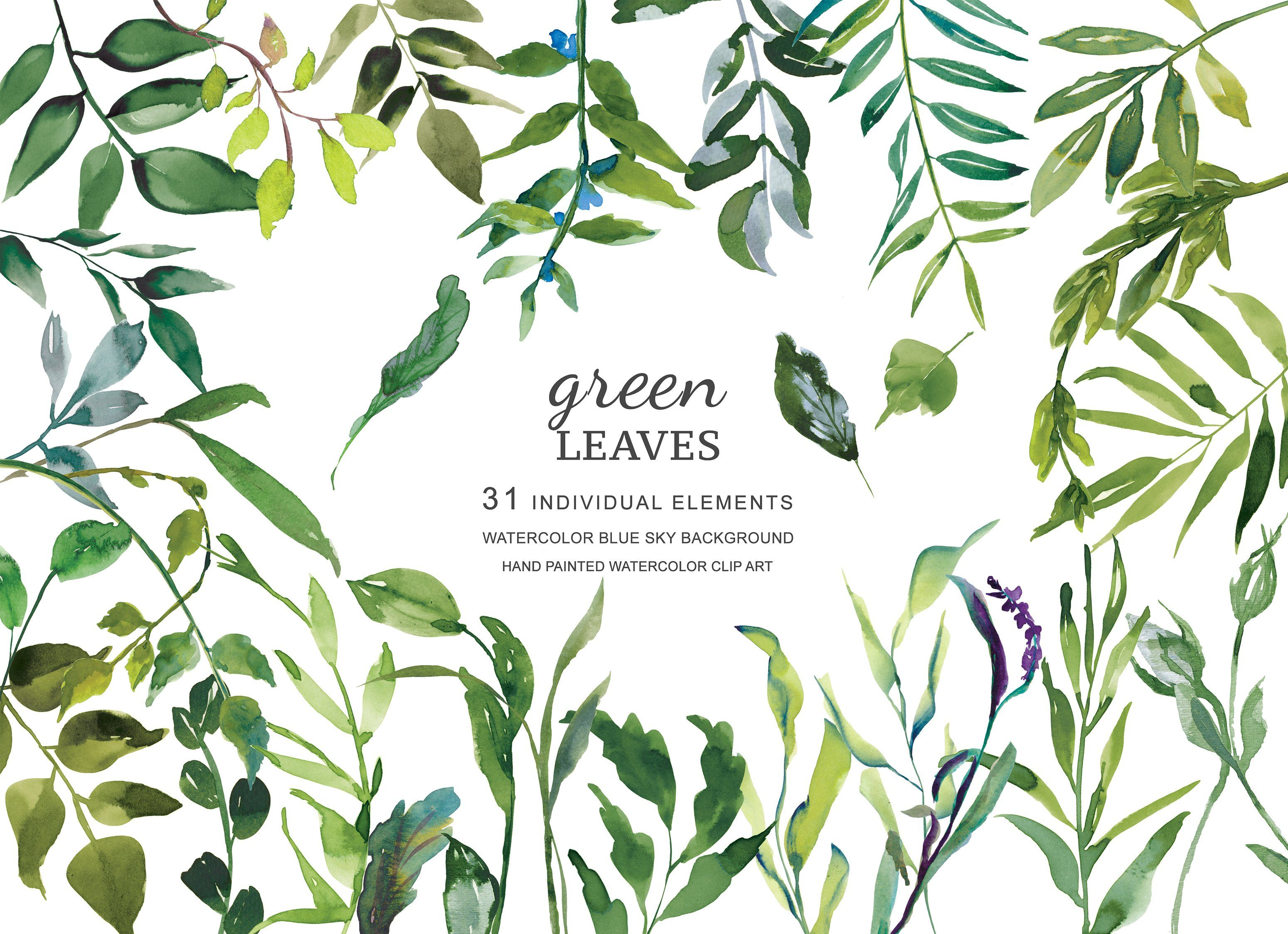 Watercolor Green Leaves Clipart Leaf Clipart Tropical Painting