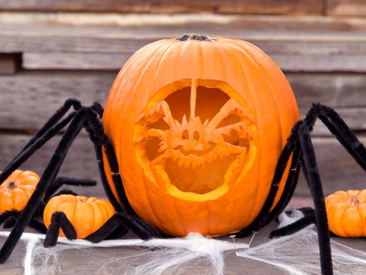 1000+ images about 31 days of Pumpkins 2015 on Pinterest | Easy ...