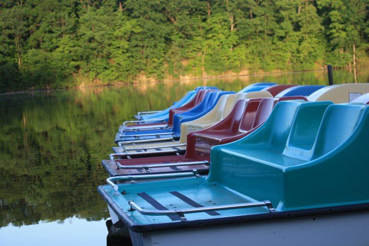 Paddle Boats At Millcreek Park Youngstown Oh Photos Pinterest Mill Creek Park Niles