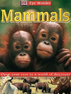 Eye Wonder: Mammals goes for a spin around the world, exploring mammals in a variety of habitats.