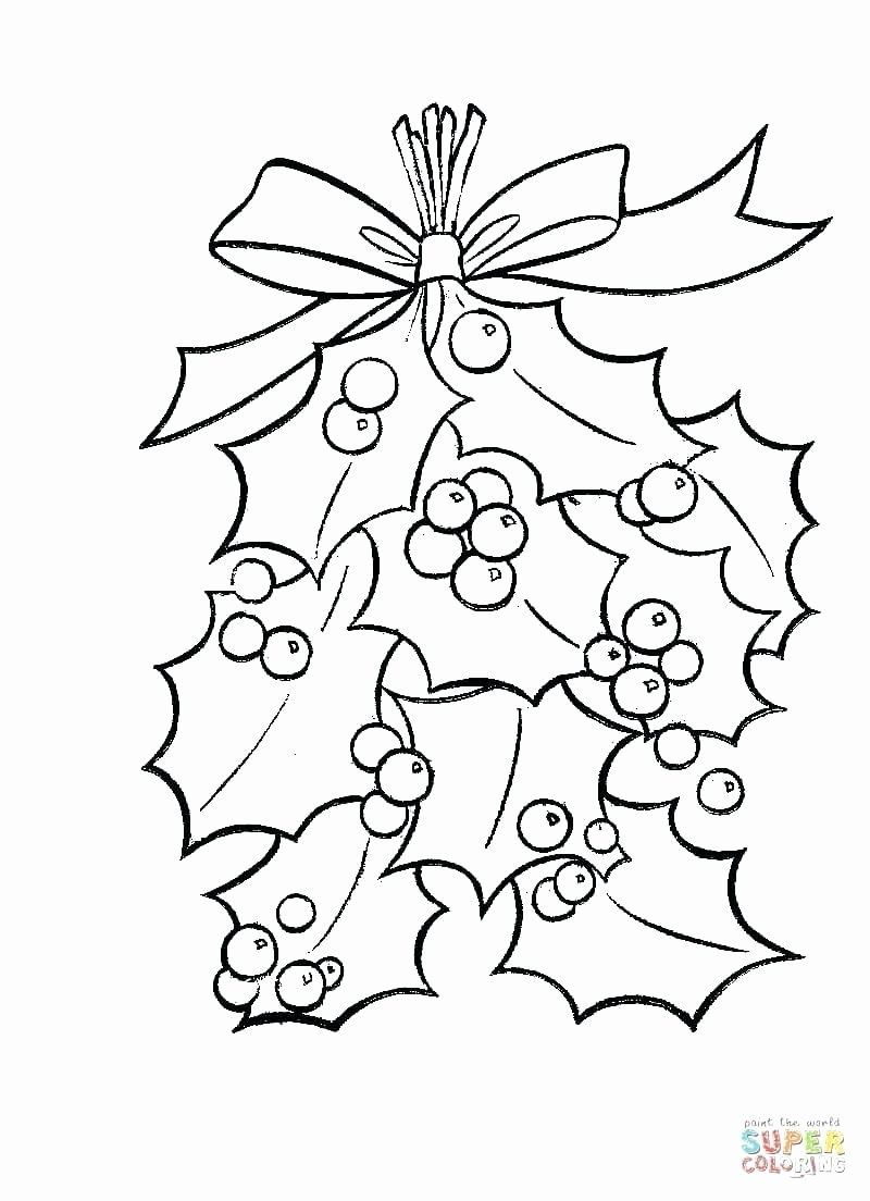 Coloring Book Evergreen Tree Elegant Pine Tree Coloring Page Findpage Christmas Coloring Pages Christmas Tree Coloring Page Merry Christmas Coloring Pages