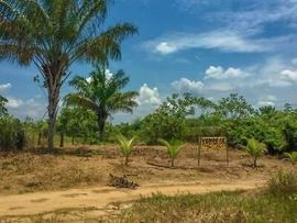 Grundstücke, Bauplätze - Brasilien 1000 Ha grosses Tiefpreis-Grundstück