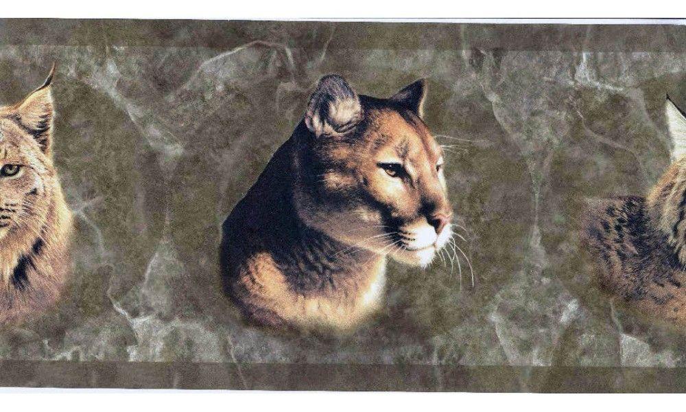 Brown Wild Cats HB112171 Wallpaper Border Cats, Animal