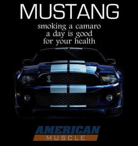 Mustang...the real deal!!