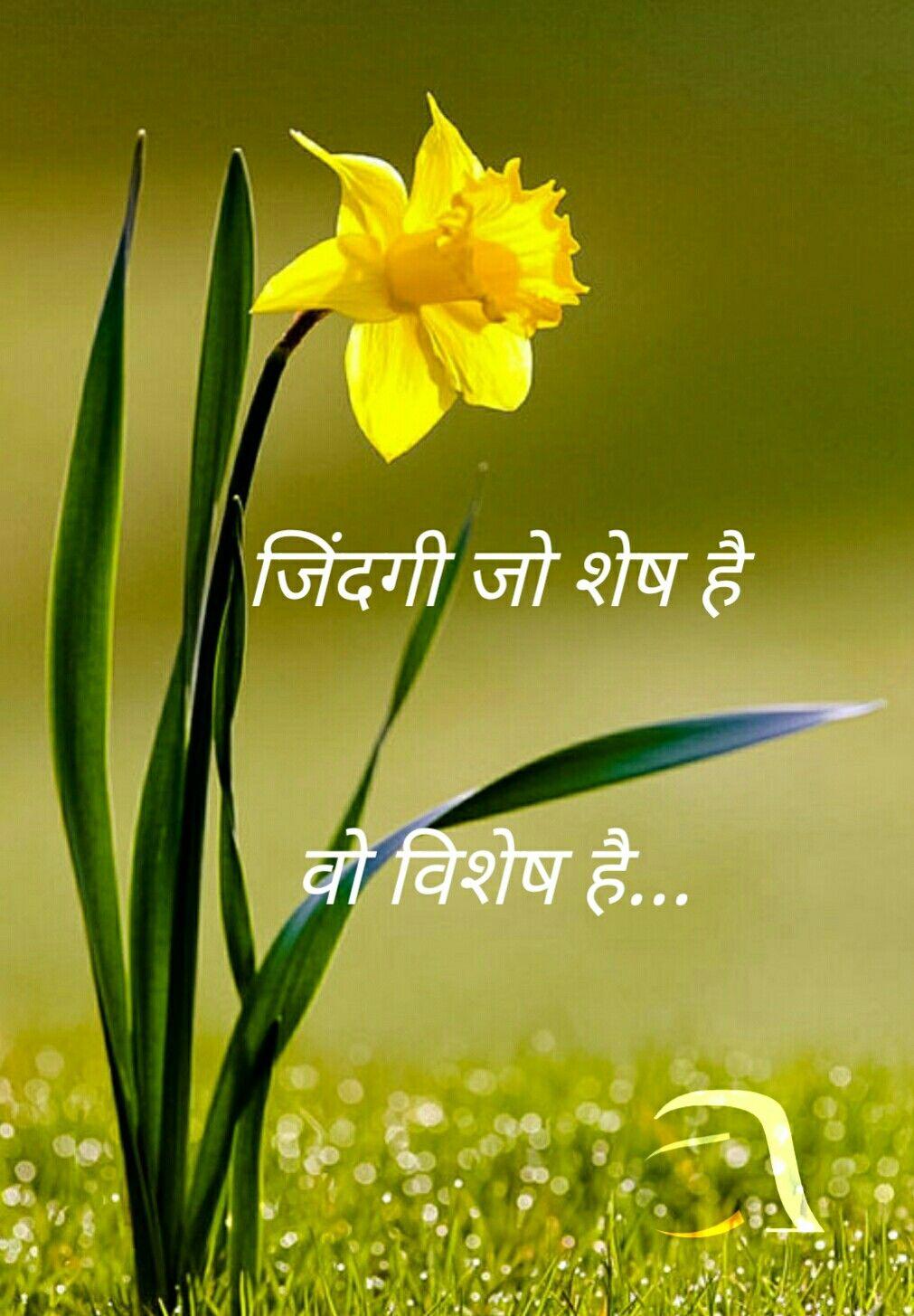 21 Best Hindi Images On Pinterest Flower Chart Hindi Language Learning Hindi Alphabet