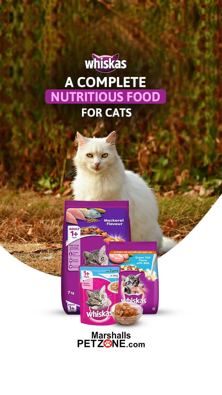 Whiskas A Complete Nutritious Food For Cats In 2020 Kitten Food Cat Food Complete Nutrition