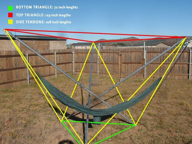 tensegrity in nature - Google Search
