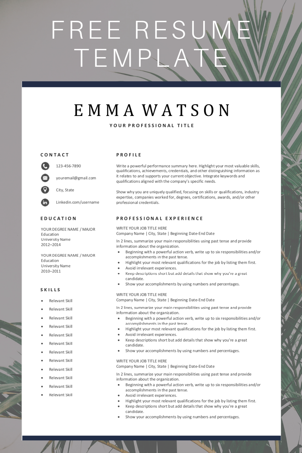 Simple Resume Template Free Download Resume template