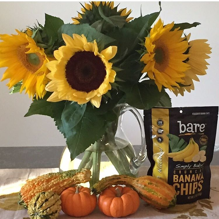 """Keep your face to the sunshine and you cannot see the shadow. It's what sunflowers do."" #HelenKeller #quote #instaquote #inspiration #truebeauty #sunflowers #fall #fallforbare"