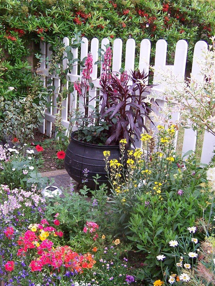 witches garden cauldron  Our cauldron cracked so this would be a