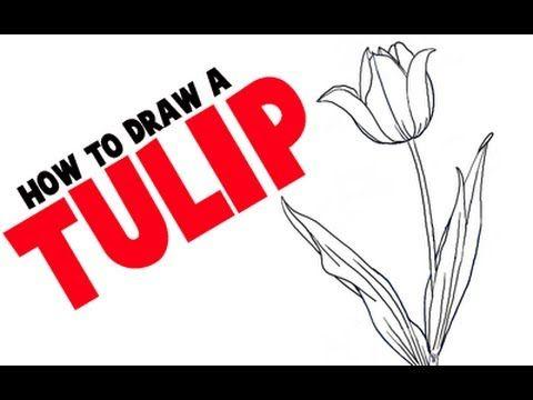 How to draw a tulip step by step flower tutorial cardsvariety how to draw a tulip step by step flower tutorial mightylinksfo