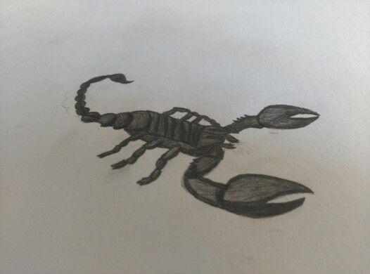 Escorpion A Lapiz Dibujos Escorpion Lapiz