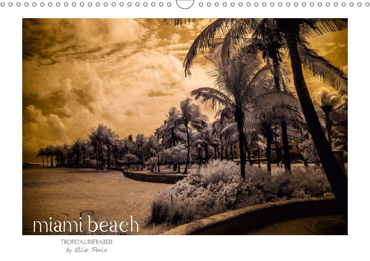 Ellie Perla Tropical Miami Beach Calendar Germany Us Version