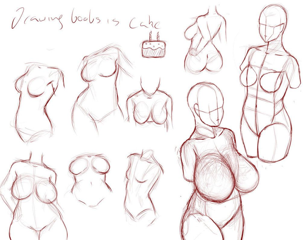 Drawing accurate female torso breasts by