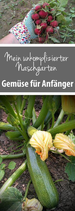 Unkomplizierter Naschgarten - Gemüse für Anfänger - grüneliebe #gemüsepflanzen