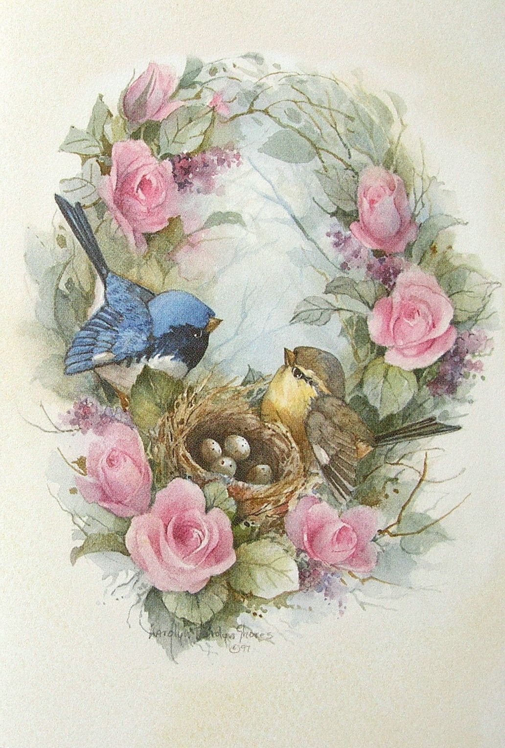 carolyn shores wright birds eggs nest pink rose flowers blank note
