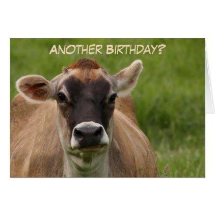Dont Have A Cow Birthday Card Birthday Diy Gift Present Custom