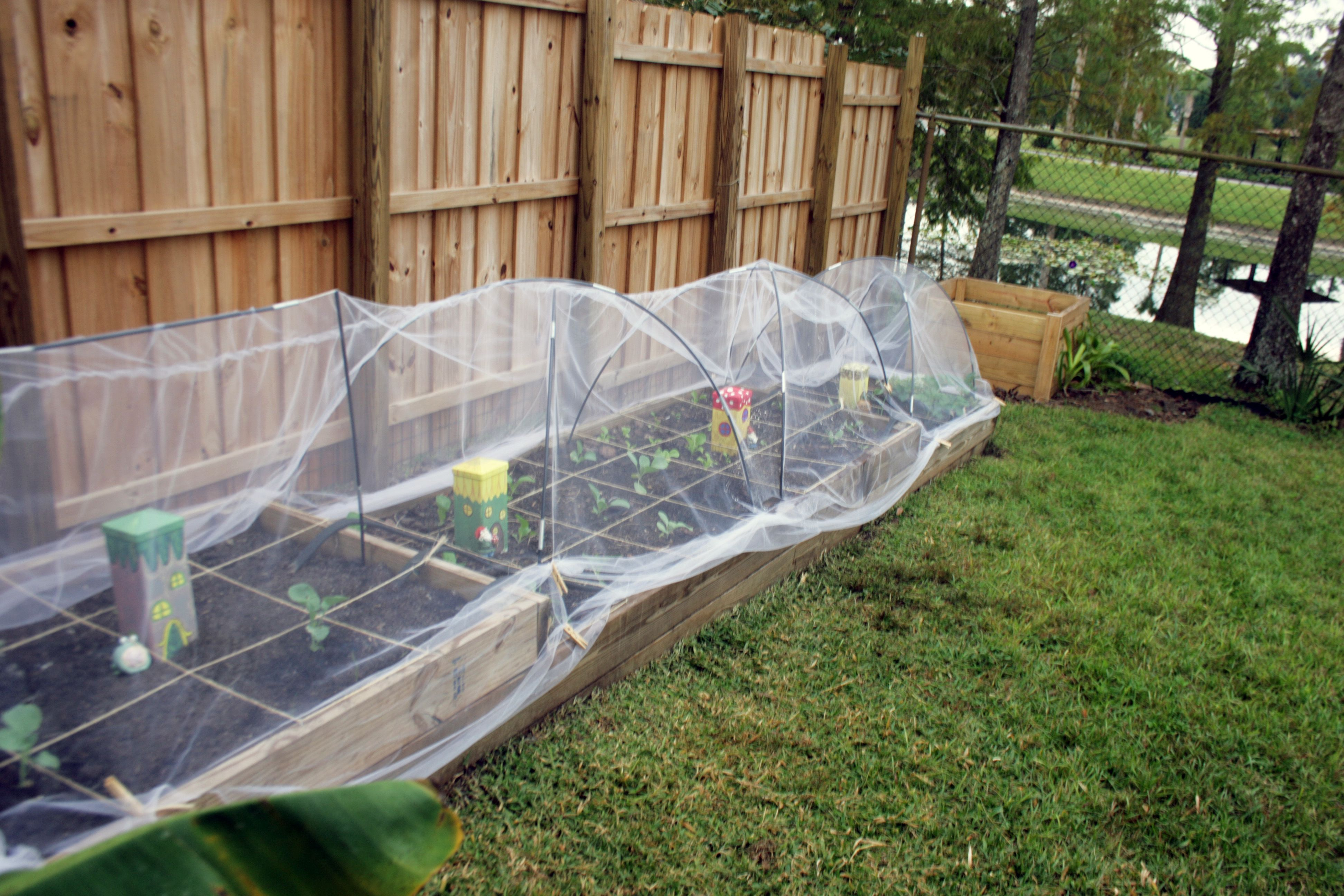 row covers using tulle (With images) Raised garden beds