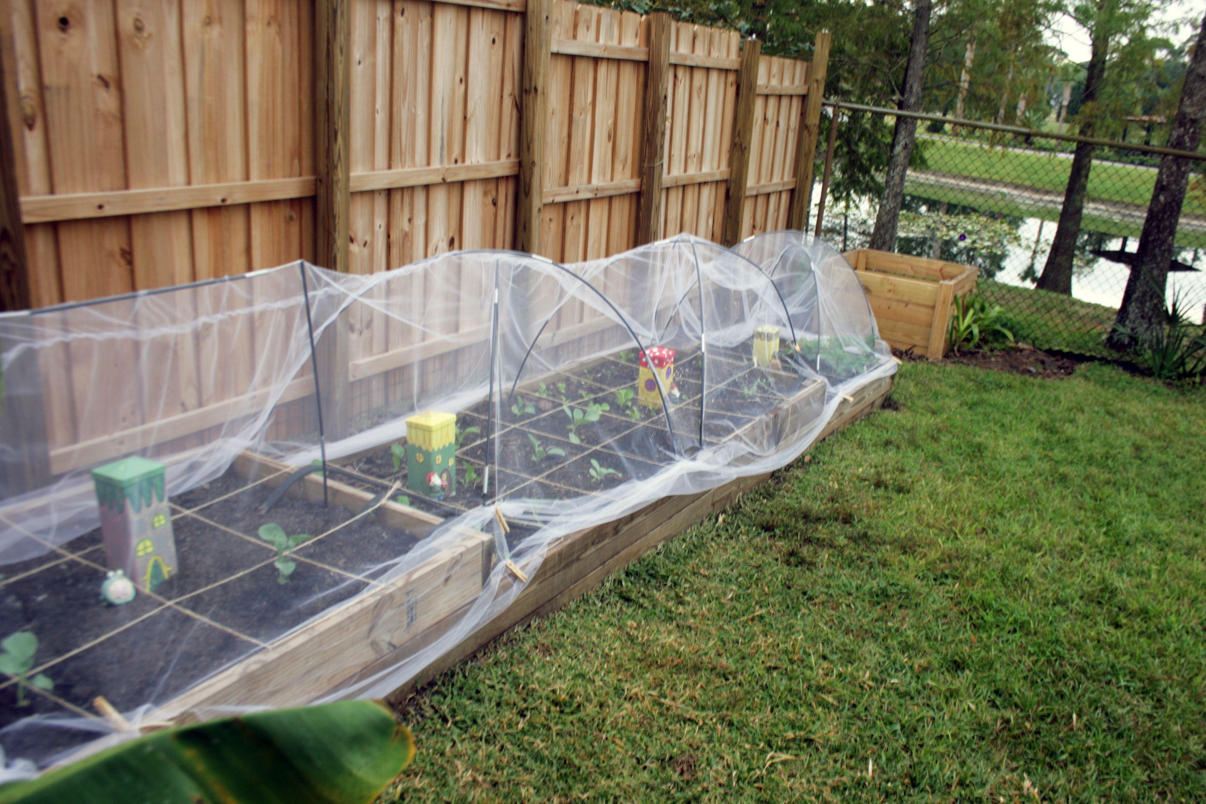 Row Covers Using Tulle Gardening Pinterest Gardens Vegetable Garden And Veg Garden
