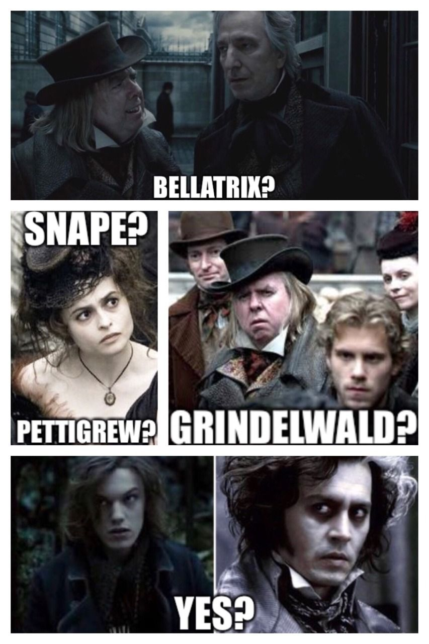 22 Harry Potter Memes Emma Watson Patrick Memes Harry Potter Memes Harry Potter Memes Hilarious Harry Potter Funny
