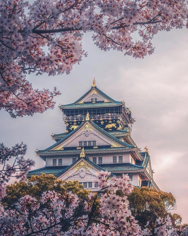 Osaka Castle Japan Pics Japan Photography Japan Aesthetic Aesthetic Japan